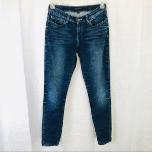 BKE Reserve Payton Skinny Jeans 29